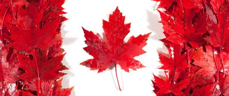 Kanada'da Master | Kanadada Yüksek Lisans Eğitimi