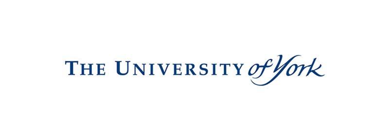 York Universitesi öğrenci görüşmeleri